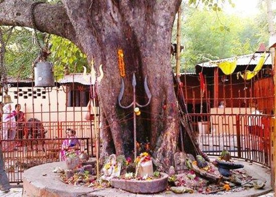 peepal-mankameshwar-temple